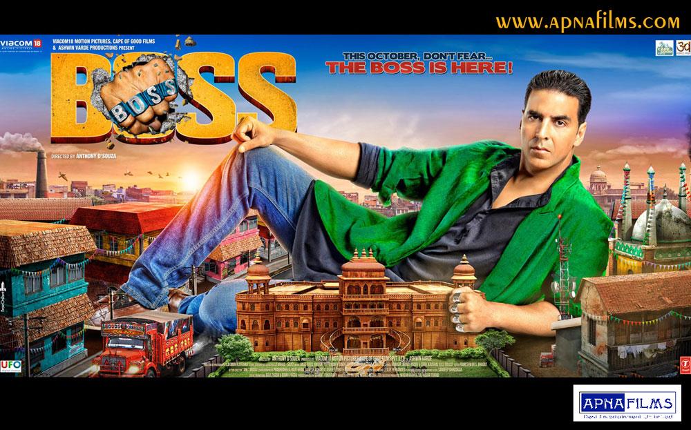 hindi films in 2013