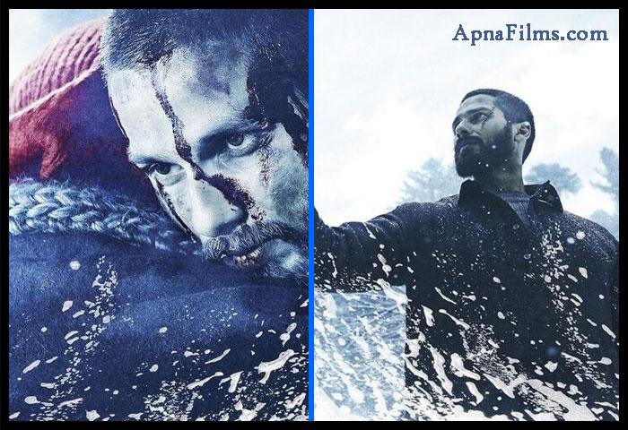 1st look hindi film haider