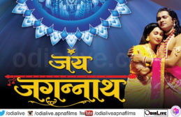 the untouchables full movie in hindi