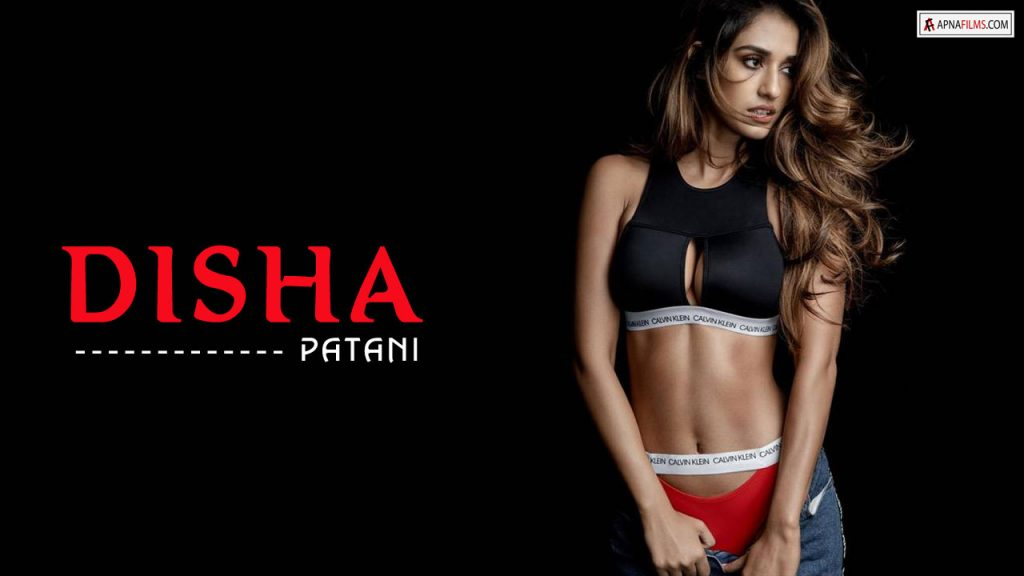 Disha Patani latest Wallpapers 4