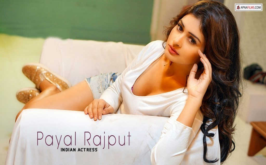 Payal Rajput Pictures Wallpapers