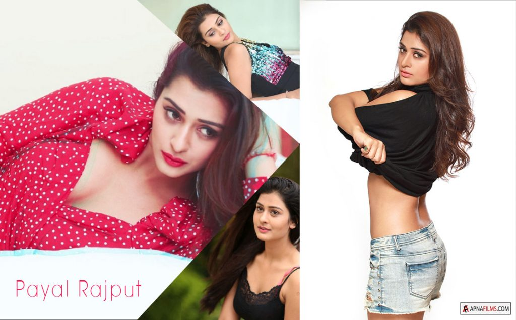 Payal Rajput Pictures Wallpapers - RX 100 Telugu film Fame actress