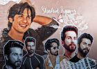 What are the upcoming projects of Shahid Kapoor?